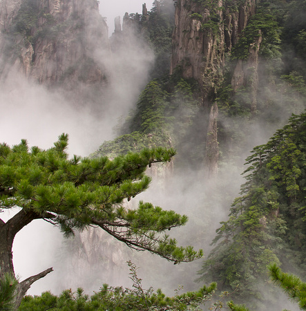 China, Huangshan: clouds move quickly revealing the vertical rocks